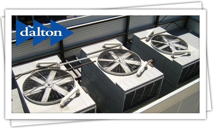 Dalton Plumbing, Heating, Cooling, Electric and Fireplaces, Inc. — Commercial Heating