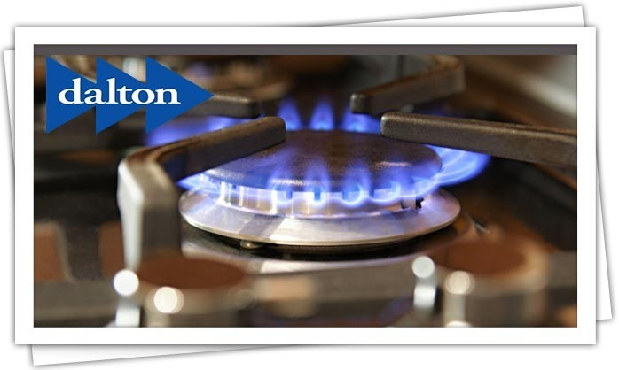 Dalton Plumbing, Heating, Cooling, Electric and Fireplaces, Inc. — Gas Line Repairs and Leak Detection