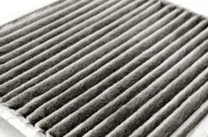 Cedar Falls Air Filter Replacement